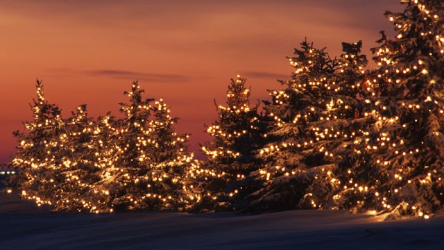 Christmas Lights HD Wallpapers Free Download