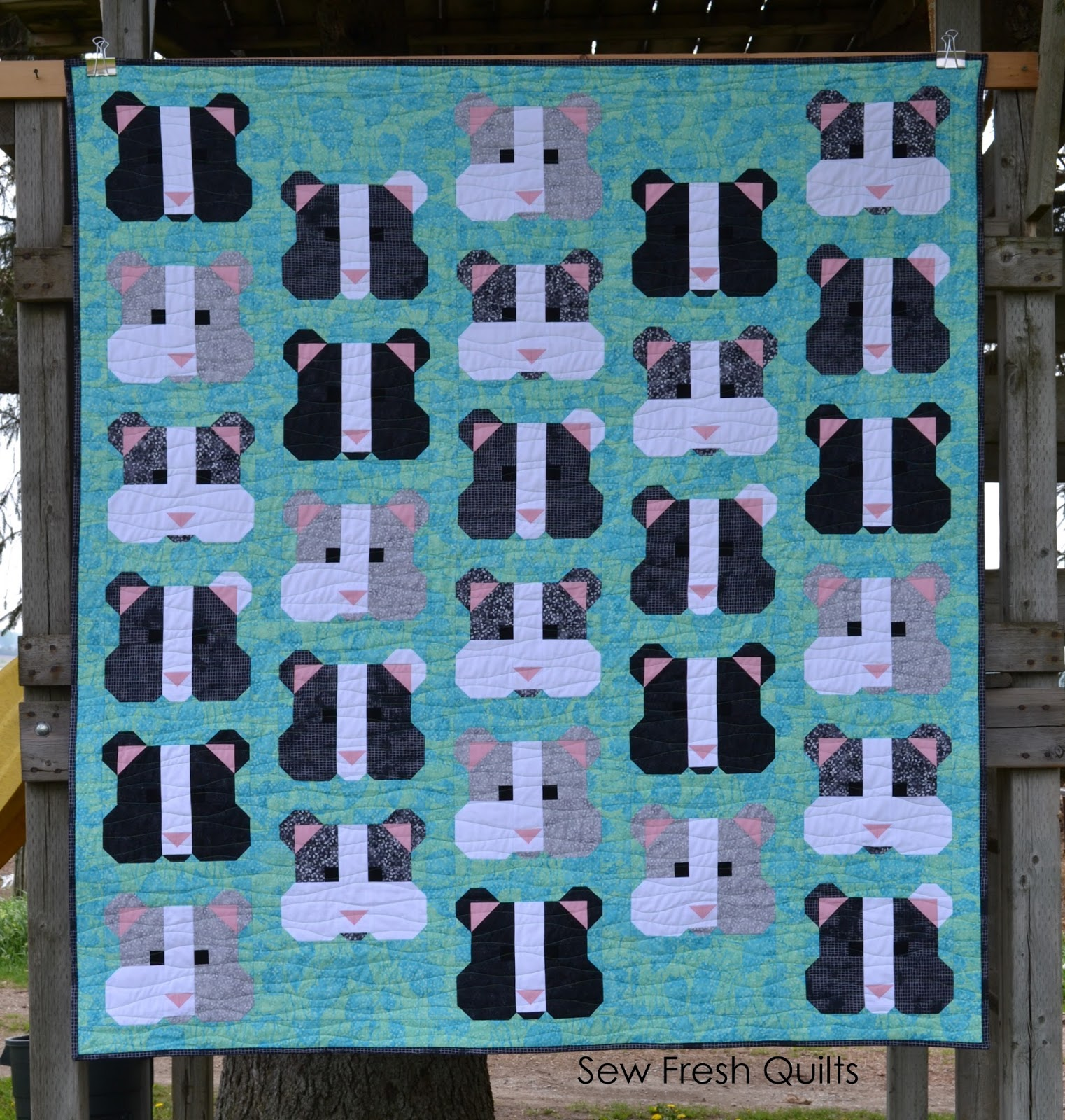 Sew fresh quilts my pet hamster quilt finishes my pet hamster quilt finishes jeuxipadfo Gallery