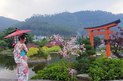 tempat wisata ala jepang di medan, Sun Flower Garden Medan, Tempat Wisata di Medan Yang Gratis, Tempat Wisata di Sumatera Utara Yang Belum Banyak Diketahui, wisata medan