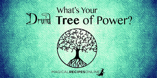 Druid's Magical Trees of the Year - Celtic Astrology
