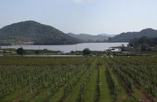 Silver Lake Pattaya | Paket Tour Murah ke Thailand 2013