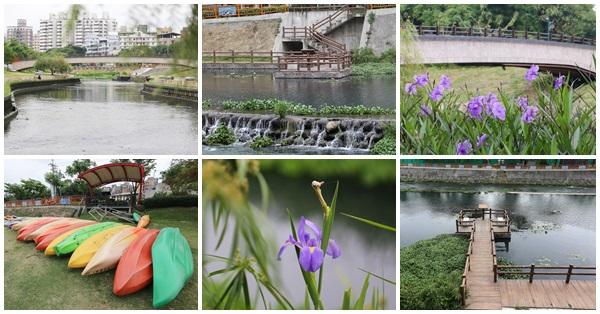 台中大里|興大康橋|景觀橋|人工濕地|木棧道|鳶尾花|落羽松|大里最美河畔