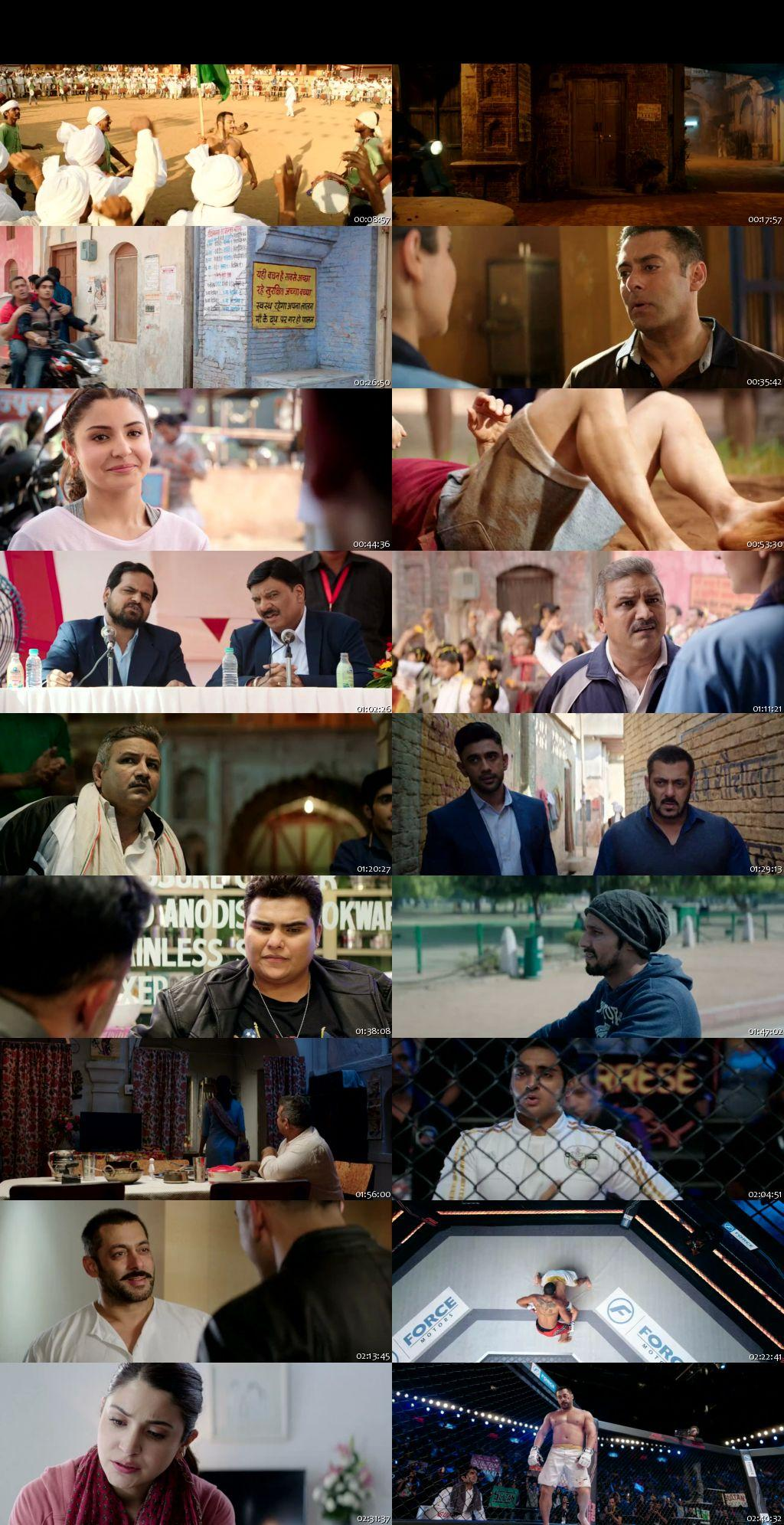 Screen Shot Of Sultan 2016 300MB BRRip 480P Full Hindi Movie Watch Online Free Download