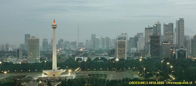 Obat Anti Rayap Jakarta