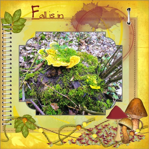 Oct.2016 Greetingscard - Fall is in ...big page