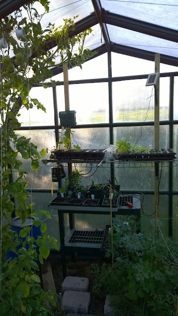 Aufzuchtstation im Gewächshaus mit Solar-Bewässerungsset  (c) by Joachim Wenk