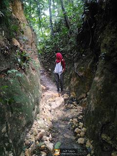 taman negara pulau pinang