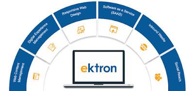 ektron cms fundamental tutorial
