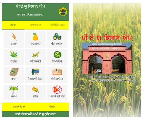 PAU (Punjab Agricultural University) Kisan Mobile