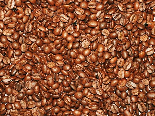 Kahve çekirdekleri içinde gizlenmiş bebek ve uğur böceği resimleri