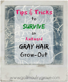 Gallimaufry Grove Tips & Tricks to Survive a Gray Hair