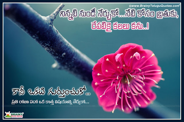 Best Telugu Successful Life Quotations Fith Awesome Hd Flowers