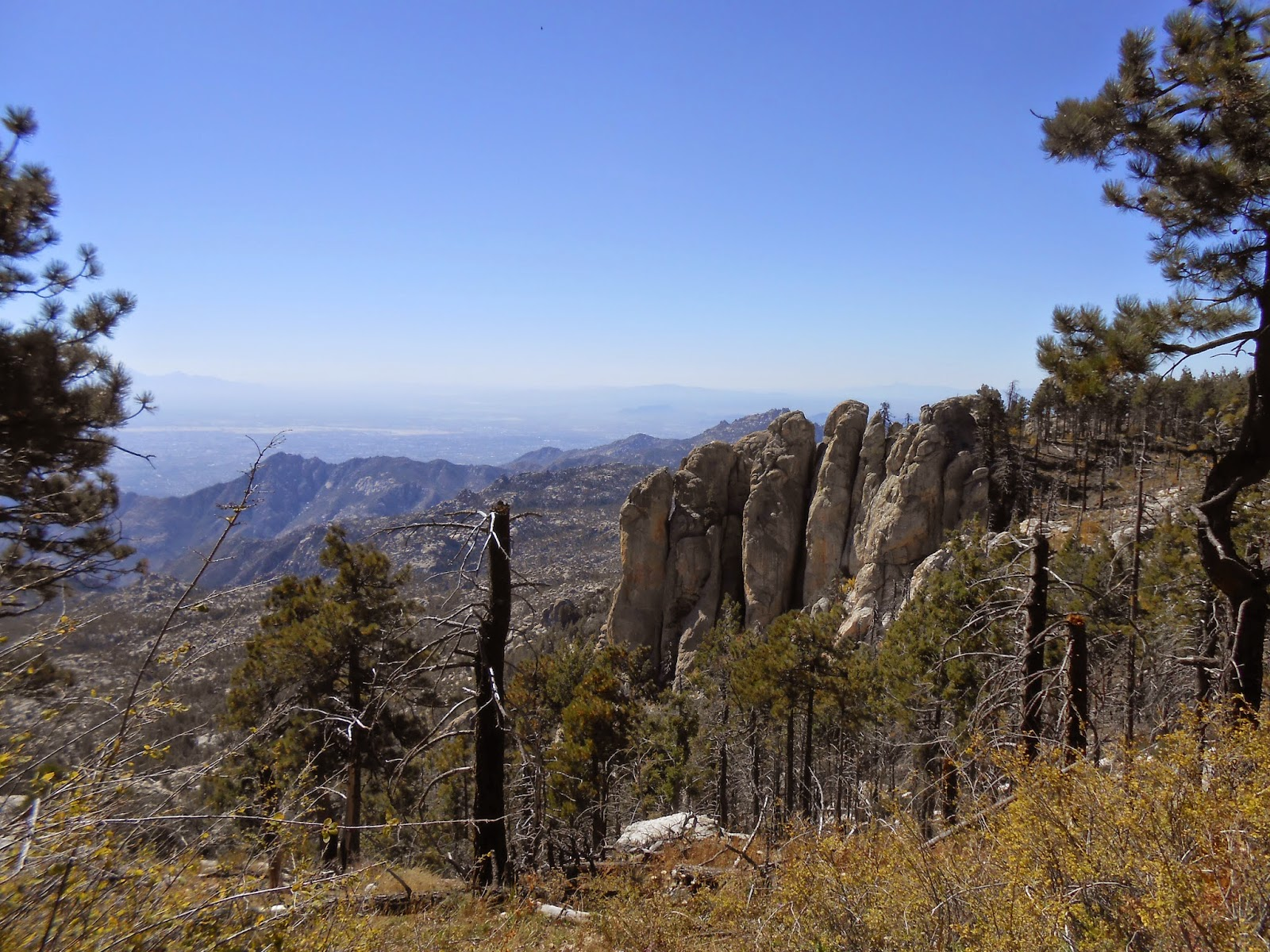 views on mount lemmon in the fall