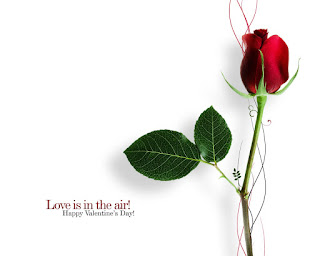 Love-is-in-the-air-happy-valentines-day-texted-single-red-rose-image.jpg