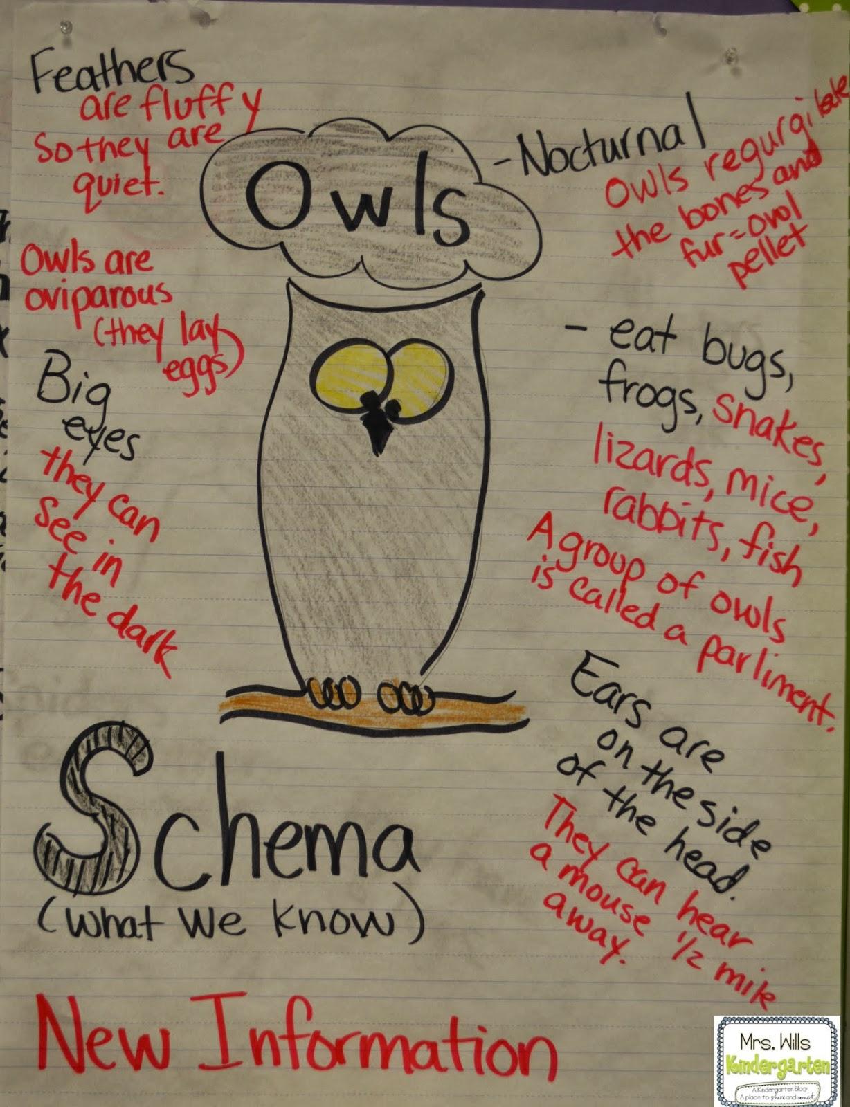 Owl Mazing Week