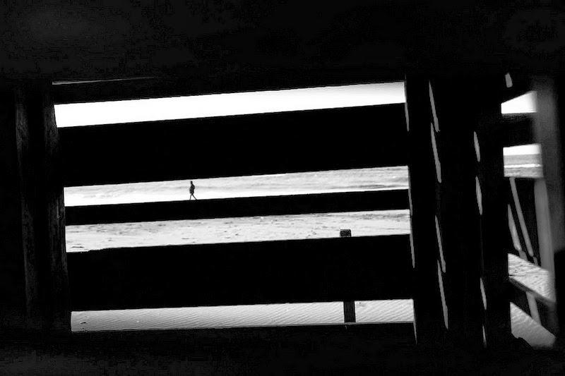 immagine in controluce in bianco e nero