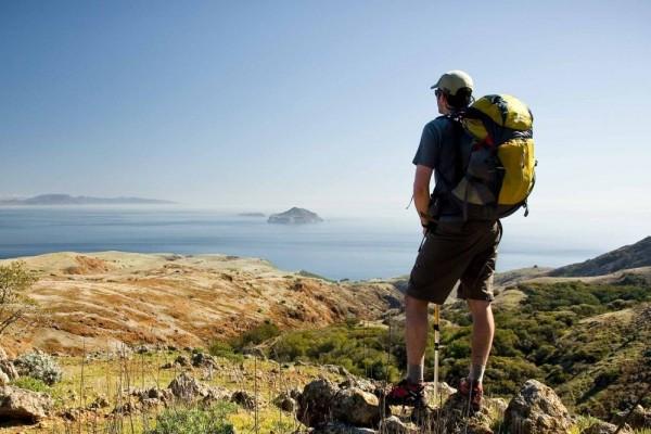 10 Hewan yang Bisa Kamu Temukan Saat Mendaki Gunung, Menggemaskan!