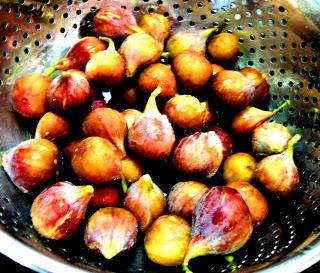 Mengenal Buah Tin Blue Celeste Figs