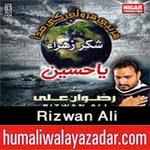 http://www.humaliwalayazadar.com/2014/02/rizwan-ali-nohay-2015.html