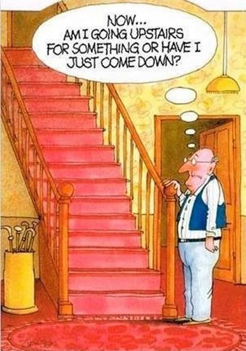 Now... am I going upstairs for something or have I just come down