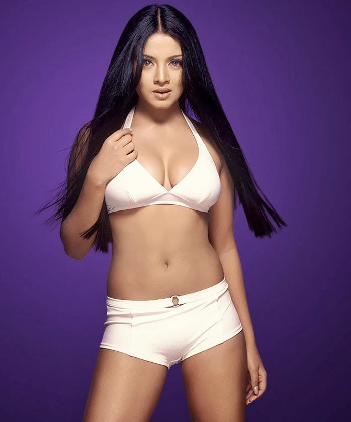 Indian Actress Celina Jaitley Hot Wallpapers And Photos -8946