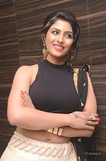 Kruthika-Stills-at-Rojulu-Marayi-Movie-Audio-Launch