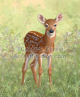 http://pixels.com/featured/cute-whitetail-deer-fawn-crista-forest.html