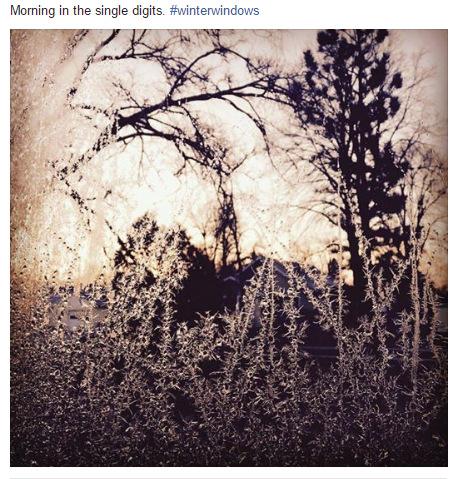 ana braga instagram