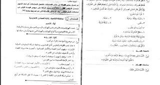 امتحانات اللغه العربيه للصف الرابع الابتدائي الترم الثاني . امتحانات المحافظات