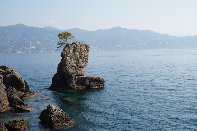 Sentier pédestre Santa Margherita Ligure → Portofino