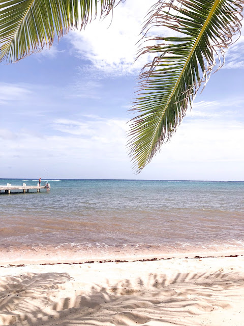 best things to do in cayman islands