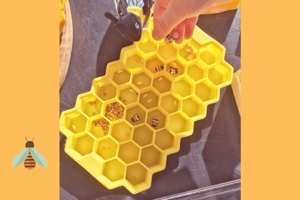 silicone honeycomb with bee eggs, pollen and baby wooden bees