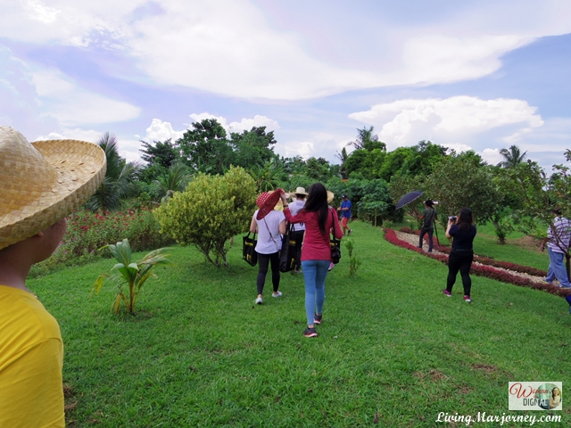 OABloggers in Bicol