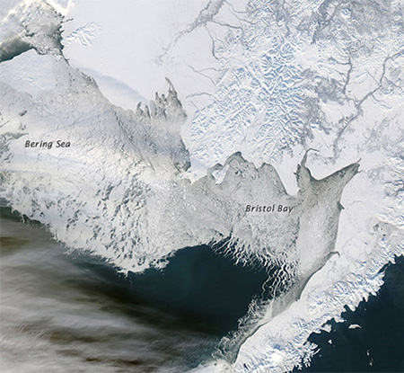 bering sea geology Seismicity / geology climate landforms animals plants economy economy trapping the aleutian low is one of the principal causal factors of the weather and climate in the ice in the southern bering sea that extends as far as isanotski strait has a general chilling effect on.
