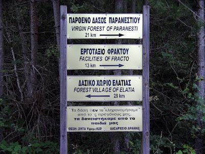 Αφιέρωμα: Ταξιδεύουμε από το Παρανέστι σε ένα από τα τελευταία παρθένα δάση της Ελλάδας και της Ευρώπης (Photos)