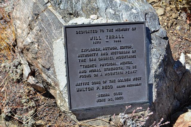 peak plaque