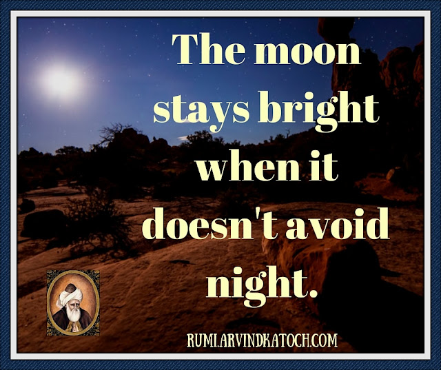 Rumi, Quote, Meaning, moon, stays, bright, avoid, night,