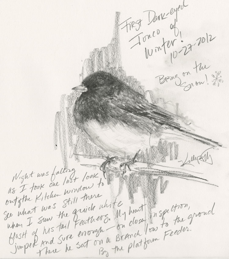 Journal entry and pencil sketch of the first Dark-eyed Junco of the winter season (by Kelly Riccetti)