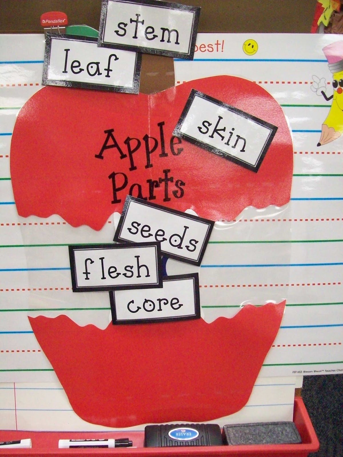 Teaching With Terhune Apple Unit