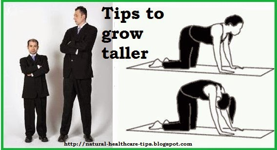 Healthy Body Fitness What Food Makes You Grow Taller