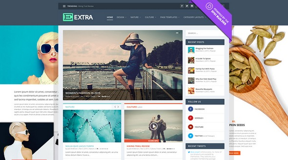 ElegantThemes - Extra v2.17.4 - Drag & Drop Magazine WordPress Theme