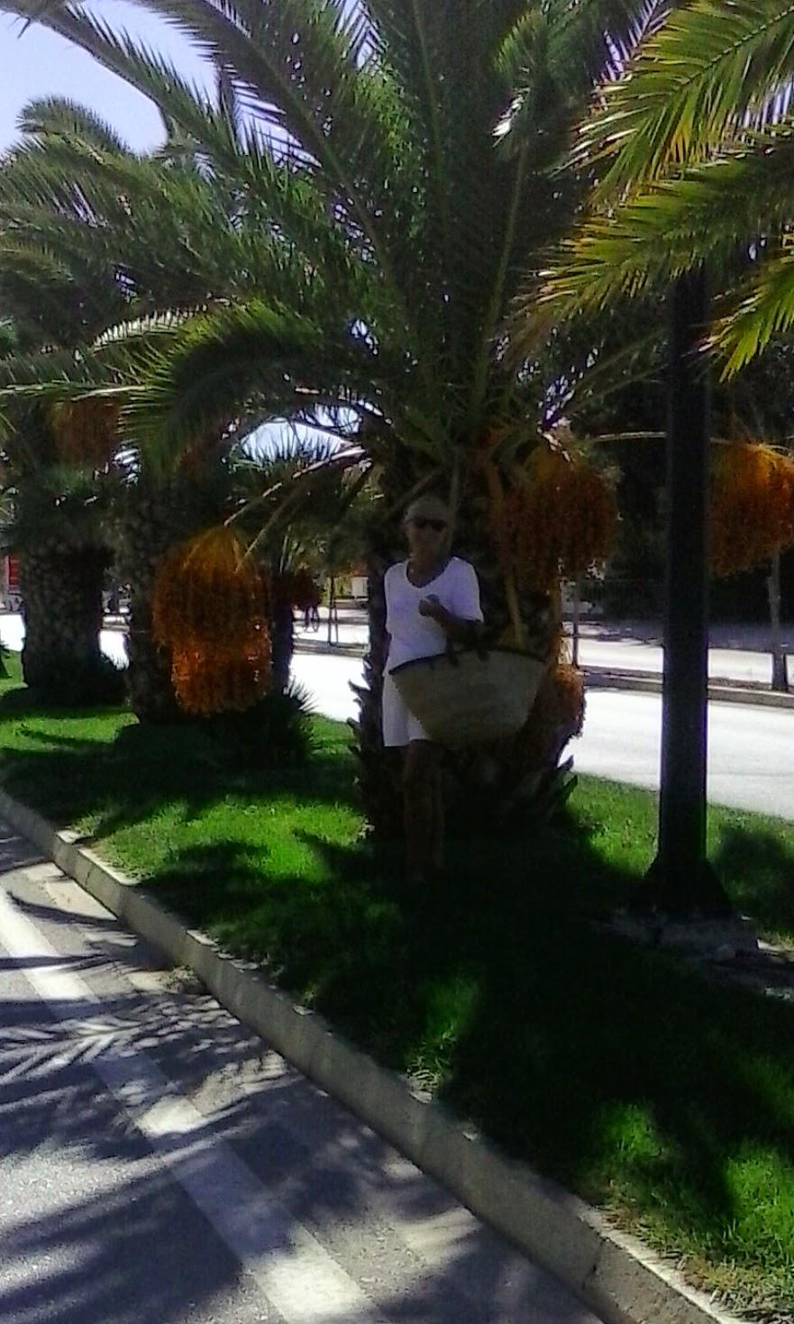 Me on Athens boulevard