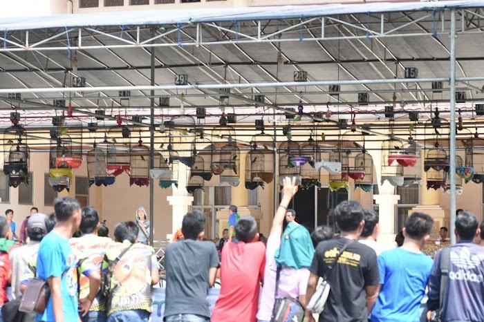 Festival Kicau Burung di Gedung Pusiban Pemkab Lamtim