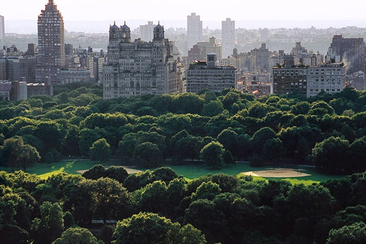2. The Great Lawn - Top 10 Things to See and Do in Central Park, NYC