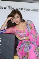 Angela Krislinzki Rogue Movie Fame Telugu Actress in Saree Backless Choli 016.JPG