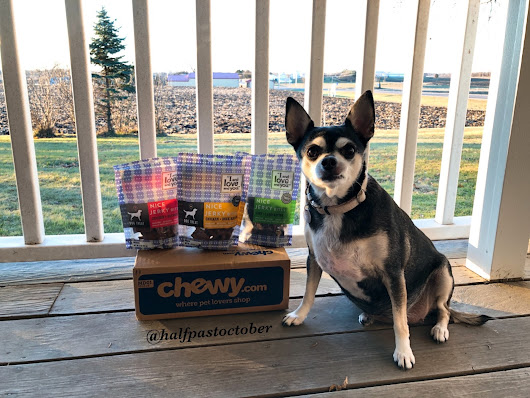 I and Love and You Jerky Bites | #chewyinfluencer