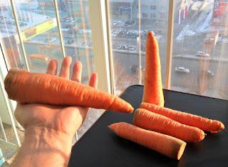 Морковка только что из погреба - февраль
