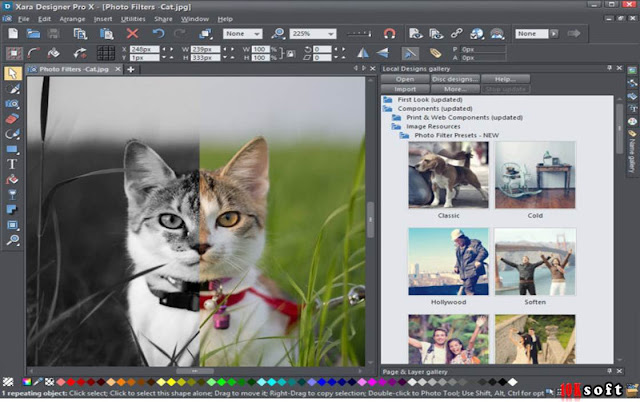Xara Web Designer Premium x365 direct Download link