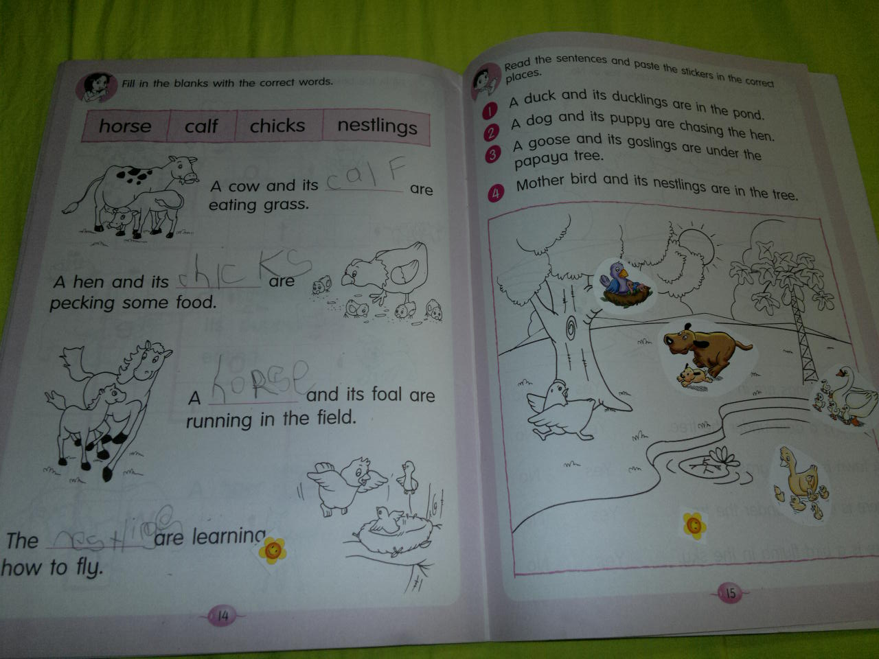 Umm Maimoonah S Journal Kindergarten Curriculum Summary