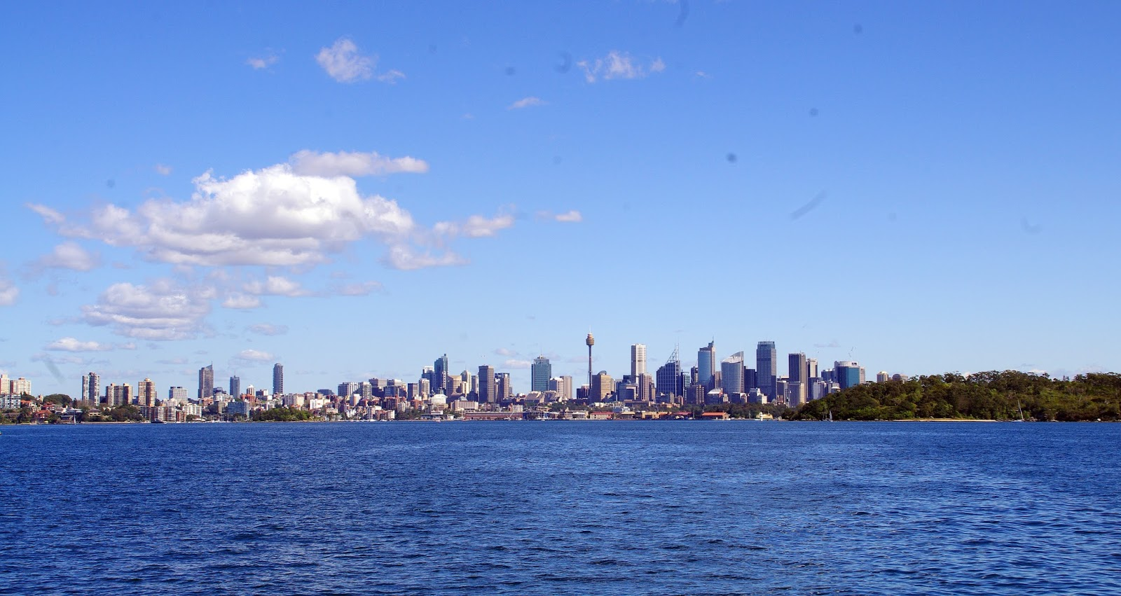 View of Sydney from watsons bay